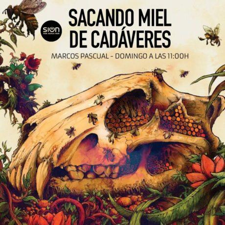SACANDO MIEL DE CADÁVERES – MARCOS PASCUAL